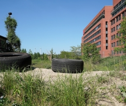 Innovative Solutions for the Redevelopment of Brownfields
