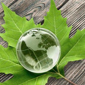 Geosolv's Environmental Commitment